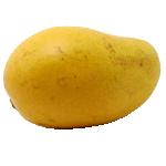 Sindhri-Mango