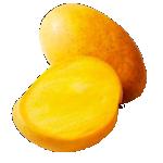 Banganpalli-Himayat-Rasalu-Totapuri-Mallika-Mangoes